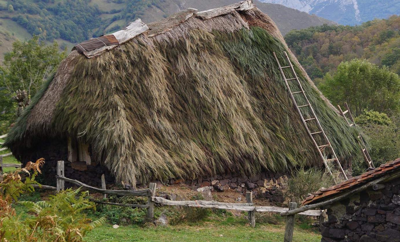 Cabaña de teito