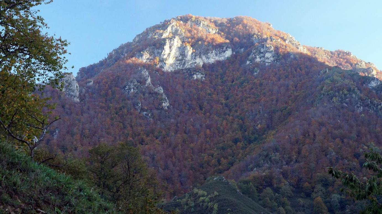 Otoño valle de Saliencia
