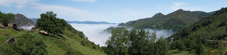 Nieblas en el alto de San Lorenzo
